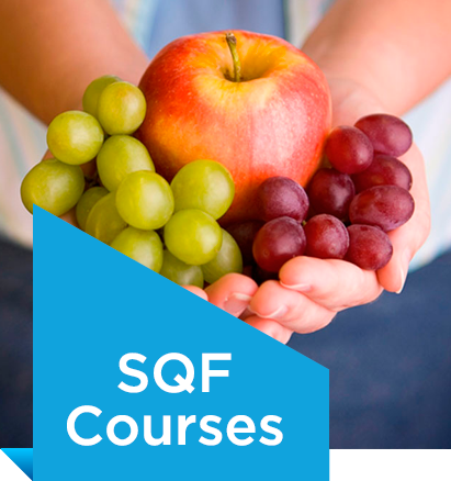 sqf-courses